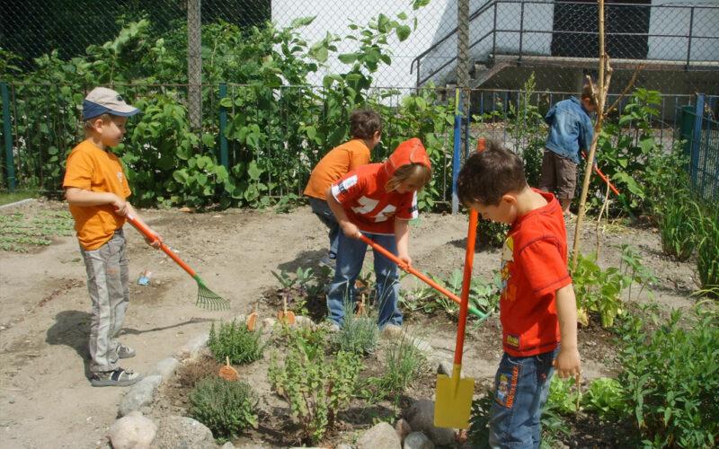 Gartenbau In Der Öko-Kita Stadtweide